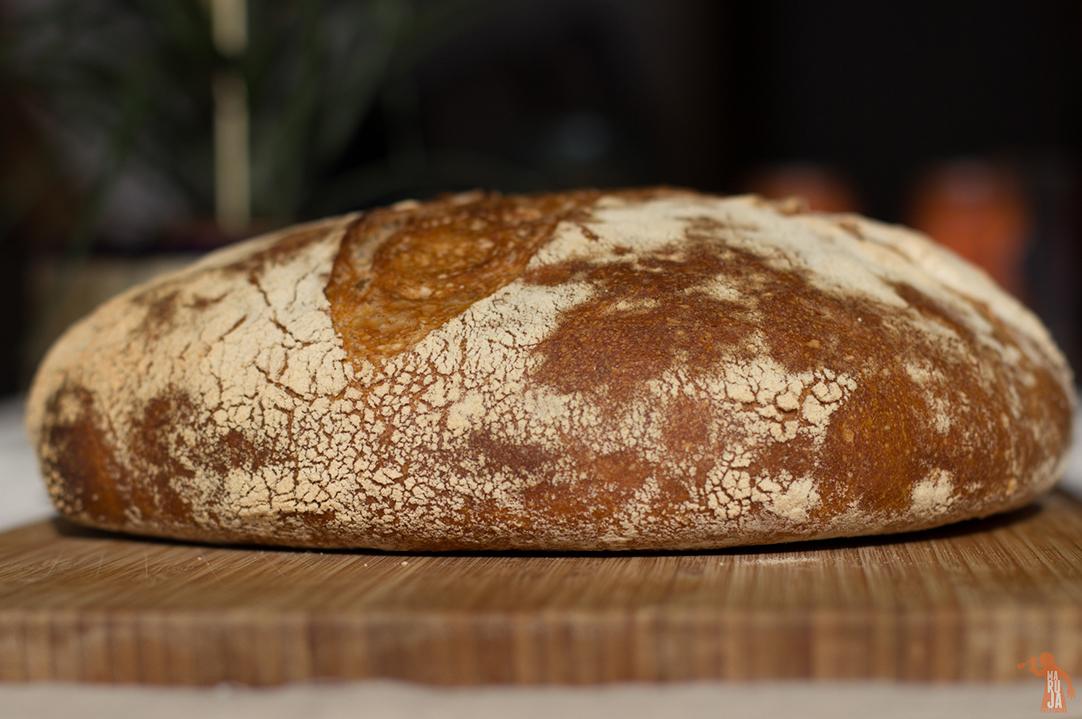 Pan con masa madre