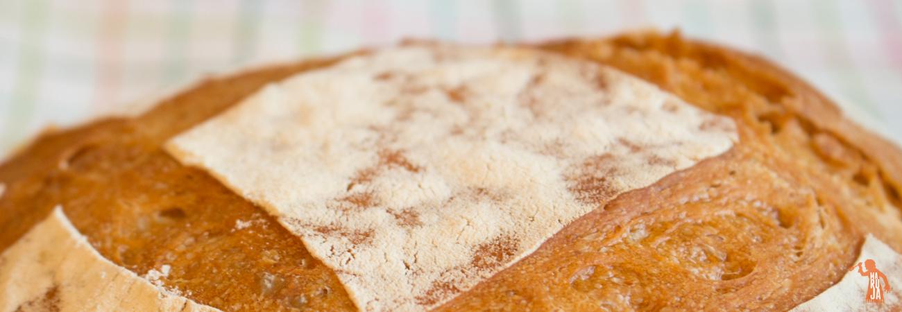 Pan con masa madre natural y sin levadura